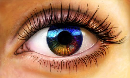 Wie funktioniert das Auge?